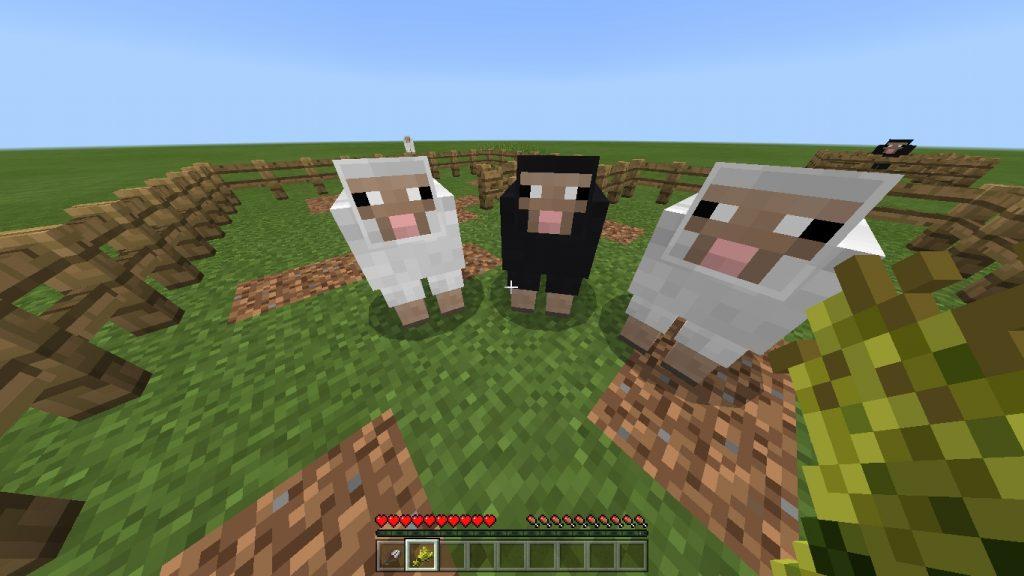 マインクラフト 羊